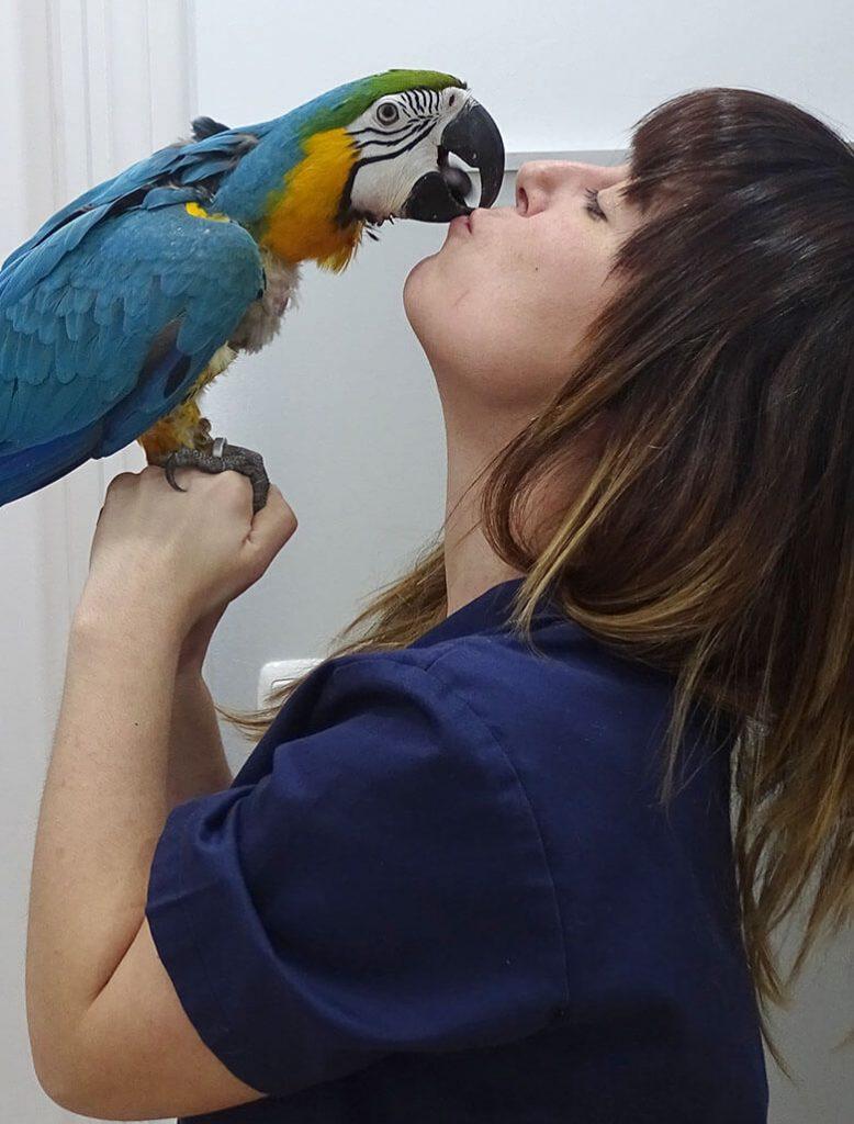 mika clinica veterinaria curriculum idoia bermeo exoticos softamologiao